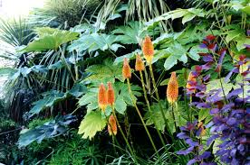 The pleasure garden, Bonnington garden