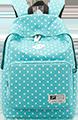 schools-consultancy-bag